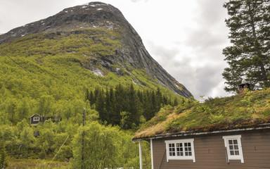 Trollstigen, Passstrasse, Holzhaus, Sommer, Norwegen