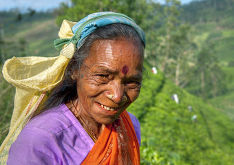 Tea Picker on the Hill