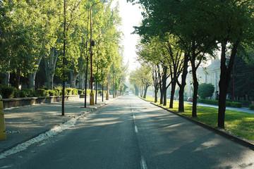 Shafarikova street Trnava