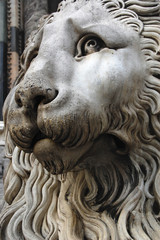Genova Cathedral Lion. Italy, Europe