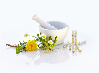 Mörser Gänseblümchen Löwenzahn Naturmedizin