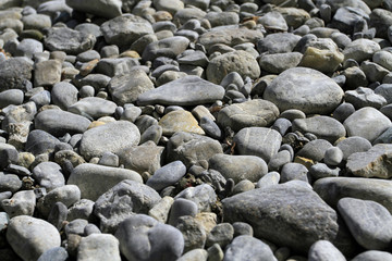 large river pebbles