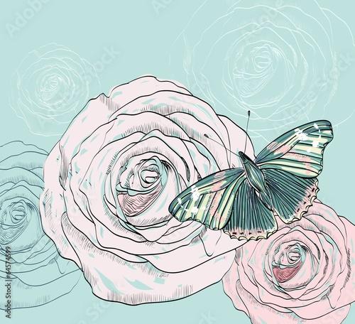 butterfly © Tapilipa