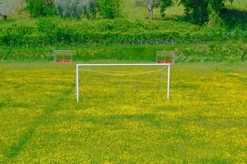 Campo di calcio sommerso dai fiori - sport all'aperto