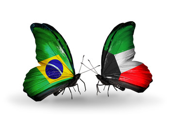Two butterflies with flags Brazil and Kuwait
