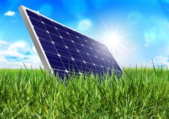 Solarpanel in der Wiese