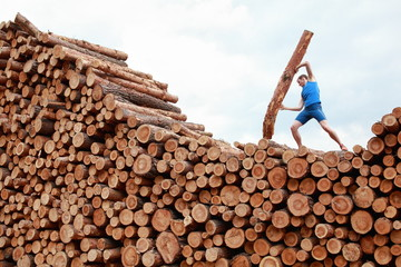 athlete on top of large pile of logs lifting  heavy log