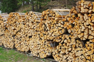 Holzstapel - stack of wood 46