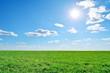 field, sky and sun