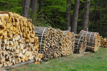 Holzstapel - stack of wood 48