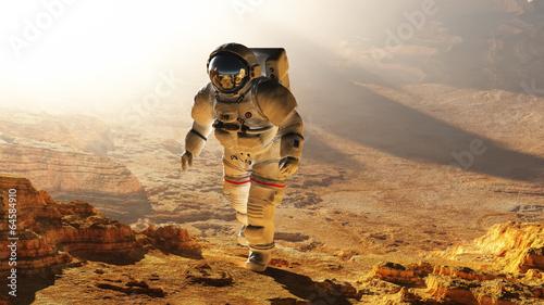 Leinwandbild Motiv The astronaut