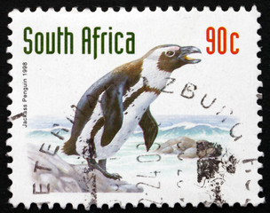 Postage stamp South Africa 1998 Jackass Penguin, Bird