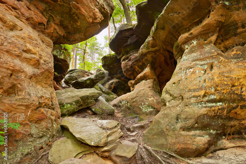 Beauty of Earth. Hell Rocks near Nieklan, Poland. - 64589121