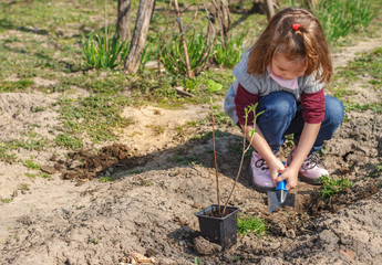 Little girl working in vegetable garden