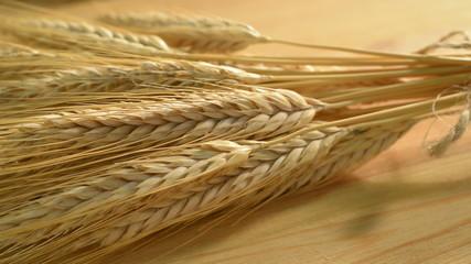 barley, panning