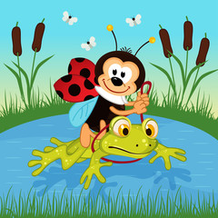 ladybug riding on frog  - vector illustration