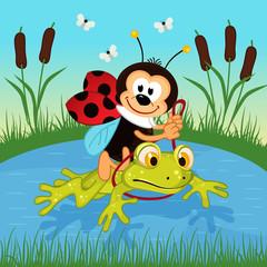 ladybug riding on frog  - vector illustration