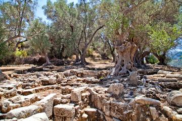Руины античного города. Греция. Крит