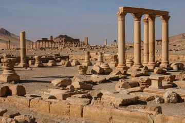 ruins of palmyra