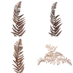 Christmas decorative Brown fern leaf