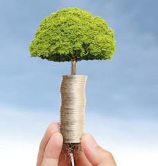 holding plant sprouting from handful of coins