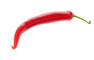 fresh colorful hot chili pepper on white