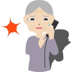 祖母 上半身 詐欺 電話
