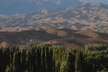 Sierras y Arboles