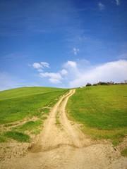 Strada di Campagna con Prato e Panorama