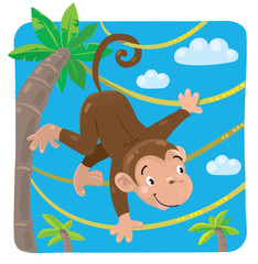Little funny monkey on lians