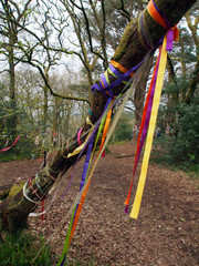 Ribbons, Fairy Hill, Scotland