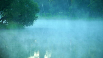 Fog over the water in the forest