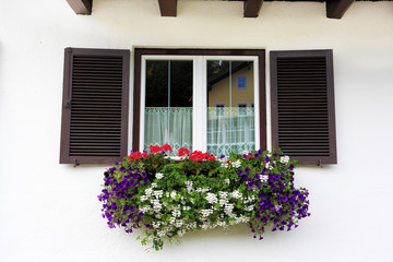 Picturesque window with flower pots