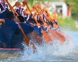Fototapety rowing team race