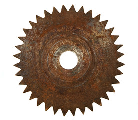 Rusted saw blade on white background