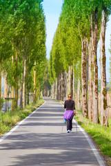 Baumallee - Naturweg