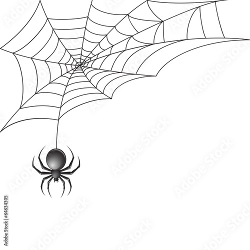 Black spider with web background - 64634305