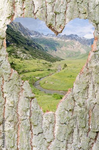 canvas print picture Herz für die Natur