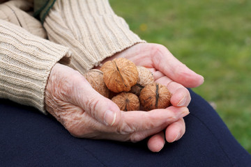 Holding walnuts