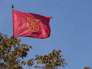 bandera navarra 2