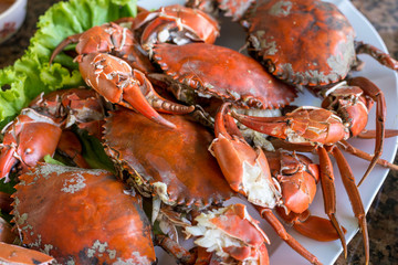 Hot steamed red crab prepare to eat on a plate