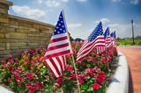 Row of American flags displayed on the street side - 64649734