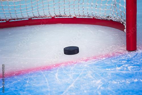 Canvas Wintersporten Hockey puck crossing goal line
