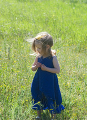 girl in a blue dress and yellow crown is on the meadows