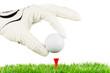 golfball wird auf den tee gelegt