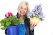 Blumen umtopfen