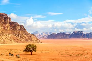 Scenic view of Jordanian Desert in Wadi Rum, Jordan.