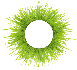 Blank white round banner on green grass isolated