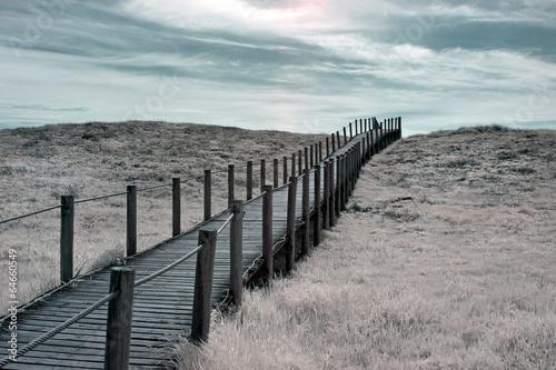Wide dune - 64660549