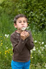 Junge pustet in einen verbluehten Loewenzahn 2